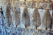 Persepolis_5