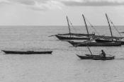 Nungwi'de Balıkçı Tekneleri (Fisher Boats in Nungwi)