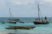 Balıkçı Tekneleri (Fisher Boats)