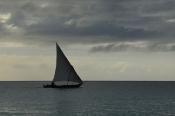 Nungwi'de Balıkçı Teknesi (Fisher Boat in Nungwi) - 3